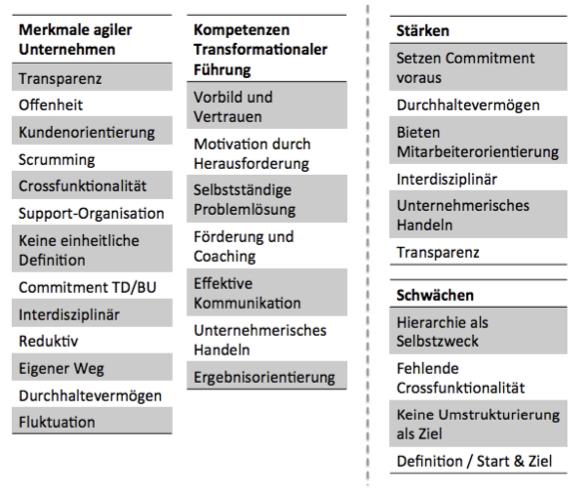 Vergleich/ Stärken & Schwächen
